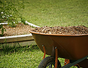 Commercial and Residential - Mulch